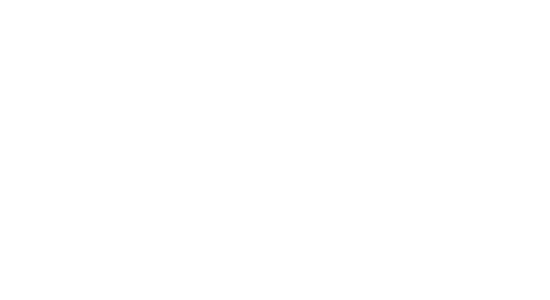 Werdermann eLearning Inc. - Where your vision takes flight
